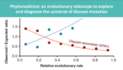 Phylomedicine: an evolutionary telescope to explore and diagnose the universe of disease mutation slide #1